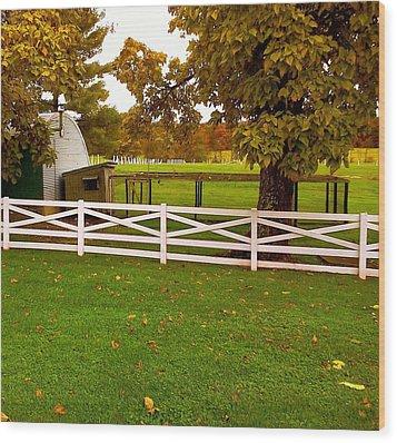 Fall At Eisenhower Farm Wood Print