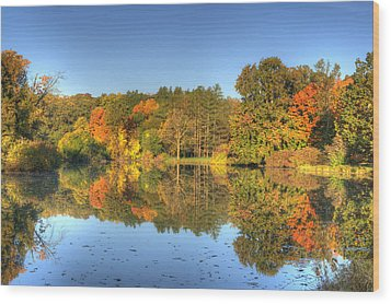 Wood Print featuring the photograph Fall At Lake Marmo by Ed Cilley