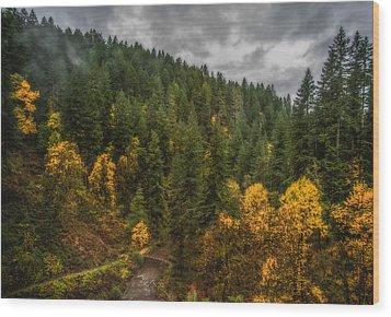 Fall At Silver Falls Wood Print by Dennis Bucklin
