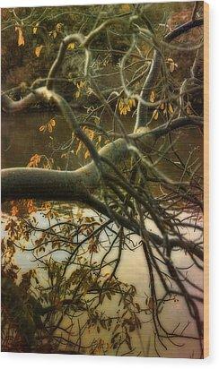 Fall At The Creek Wood Print by Ellen Heaverlo