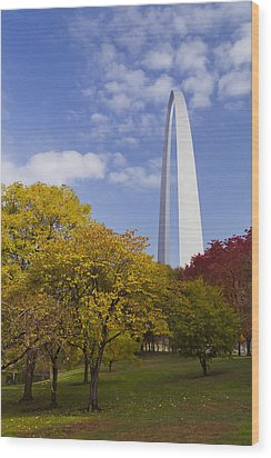 Fall At The St Louis Arch Wood Print