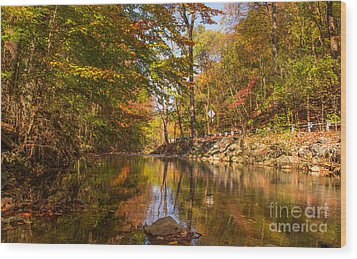 Fall At Valley Creek  Wood Print by Rima Biswas