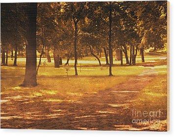 Fall Autumn Park Wood Print by Michal Bednarek