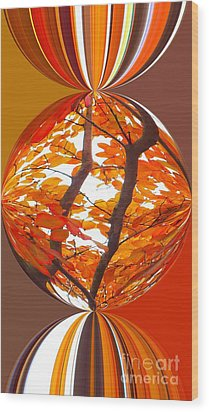 Fall Ball - Autumn Color Wood Print by Scott Cameron