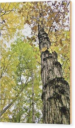 Fall Blur Wood Print