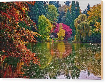 Fall By The Water Wood Print by Rae Berge