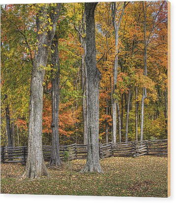 Fall Color #1 Wood Print by Wendell Thompson