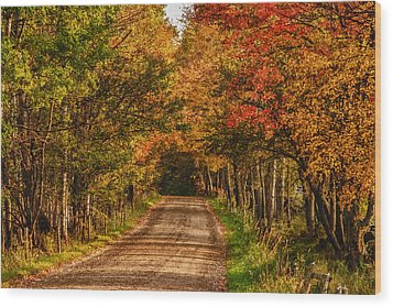Wood Print featuring the photograph Fall Color Along A Dirt Backroad by Jeff Folger