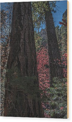 West Fork Perspective Wood Print