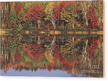 Wood Print featuring the photograph Fall Color Reflected In Thornton Lake Michigan by Dave Welling