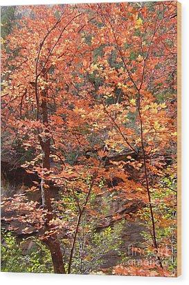 Fall Colors 6335 Wood Print