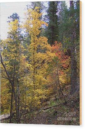 Fall Colors 6368 Wood Print