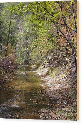 Fall Colors 6379 Wood Print
