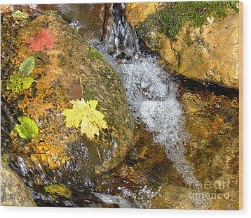 Fall Colors 6389 Wood Print