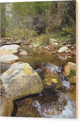 Fall Colors 6390 Wood Print
