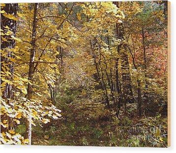 Fall Colors 6405 Wood Print