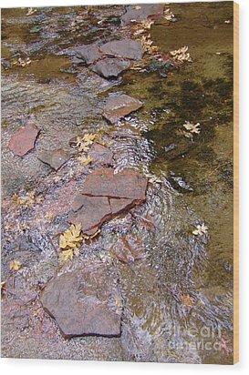 Fall Colors 6443 Wood Print
