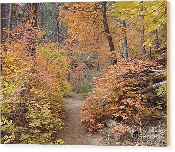 Fall Colors 6454 Wood Print