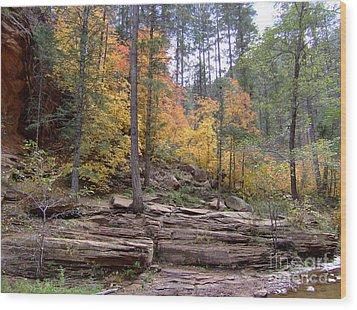 Fall Colors 6463-02 Wood Print