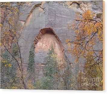 Fall Colors 6482 Wood Print
