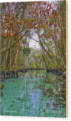 Fall Colors Along Three Sisters Spring Run Wood Print