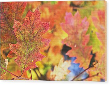 Wood Print featuring the photograph Fall Colors by Arkady Kunysz