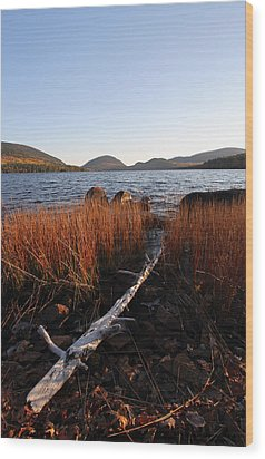 Fall Colors At Eagle Lake In Maine Wood Print by Juergen Roth