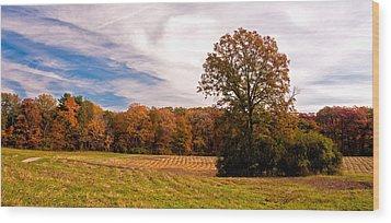 Fall Colors At Poets Walk Park Wood Print by Nancy De Flon