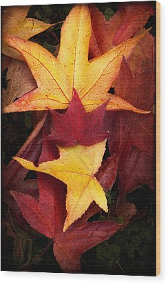 Fall Colors Wood Print by Bobbi Feasel
