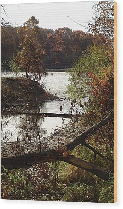 Wood Print featuring the photograph Fall Colors by J L Zarek