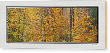 Fall Colors Wood Print by John Bushnell