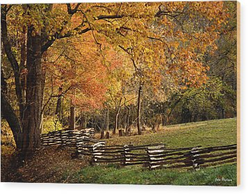 Fall Colors, Asheville, North Carolina Wood Print