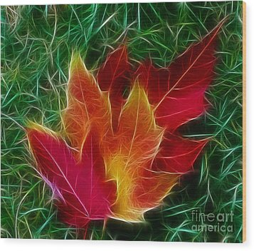 Wood Print featuring the photograph Fall Colors by JRP Photography