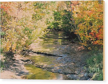 Fall Colors Wood Print by Kathleen Struckle