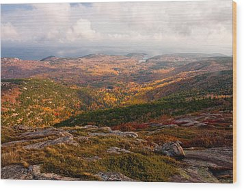 Fall Colors Of Acadia 6656 Wood Print by Brent L Ander