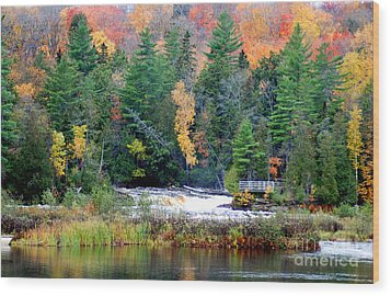 Fall Colors On The  Tahquamenon River   Wood Print by Optical Playground By MP Ray