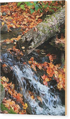 Wood Print featuring the photograph Fall Creek by Alicia Knust