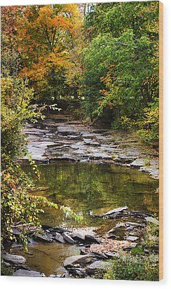 Fall Creek Wood Print by Christina Rollo
