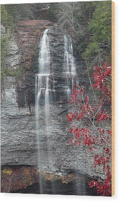 Wood Print featuring the photograph Fall Creek Falls  by Robert Camp