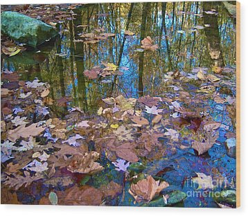 Fall Creek Wood Print by Pamela Clements