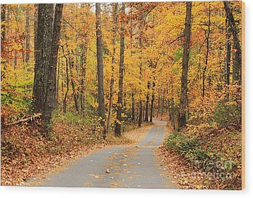 Wood Print featuring the photograph Fall Drive by Geraldine DeBoer