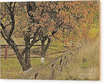 Fall Fenced Wood Print by Tonia Noelle
