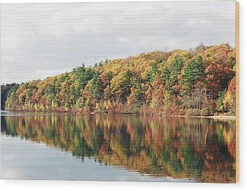 Fall Foliage At Walden Pond Wood Print by John Sarnie