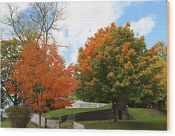 Wood Print featuring the photograph Fall Foliage Colors 09 by Metro DC Photography