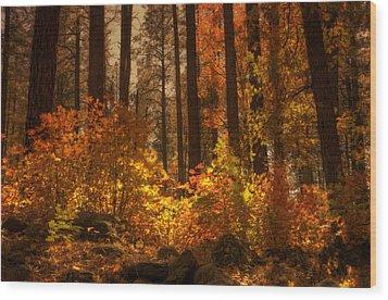 Fall Forest  Wood Print by Saija  Lehtonen