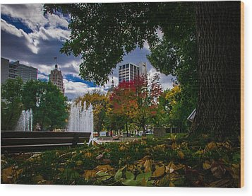 Fall Fort Wayne Skyline Wood Print by Gene Sherrill