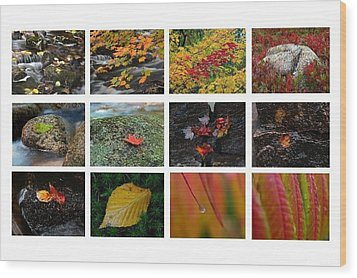Fall Greetings Wood Print by Juergen Roth
