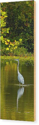 Fall Heron Wood Print