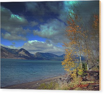 Wood Print featuring the photograph Fall In Jackson Lake by Irina Hays