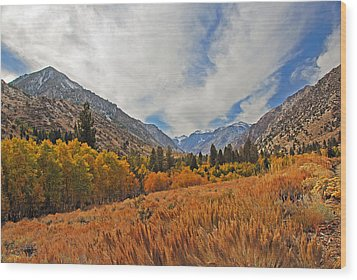 Fall In Lundy Canyon Wood Print by Lynn Bauer